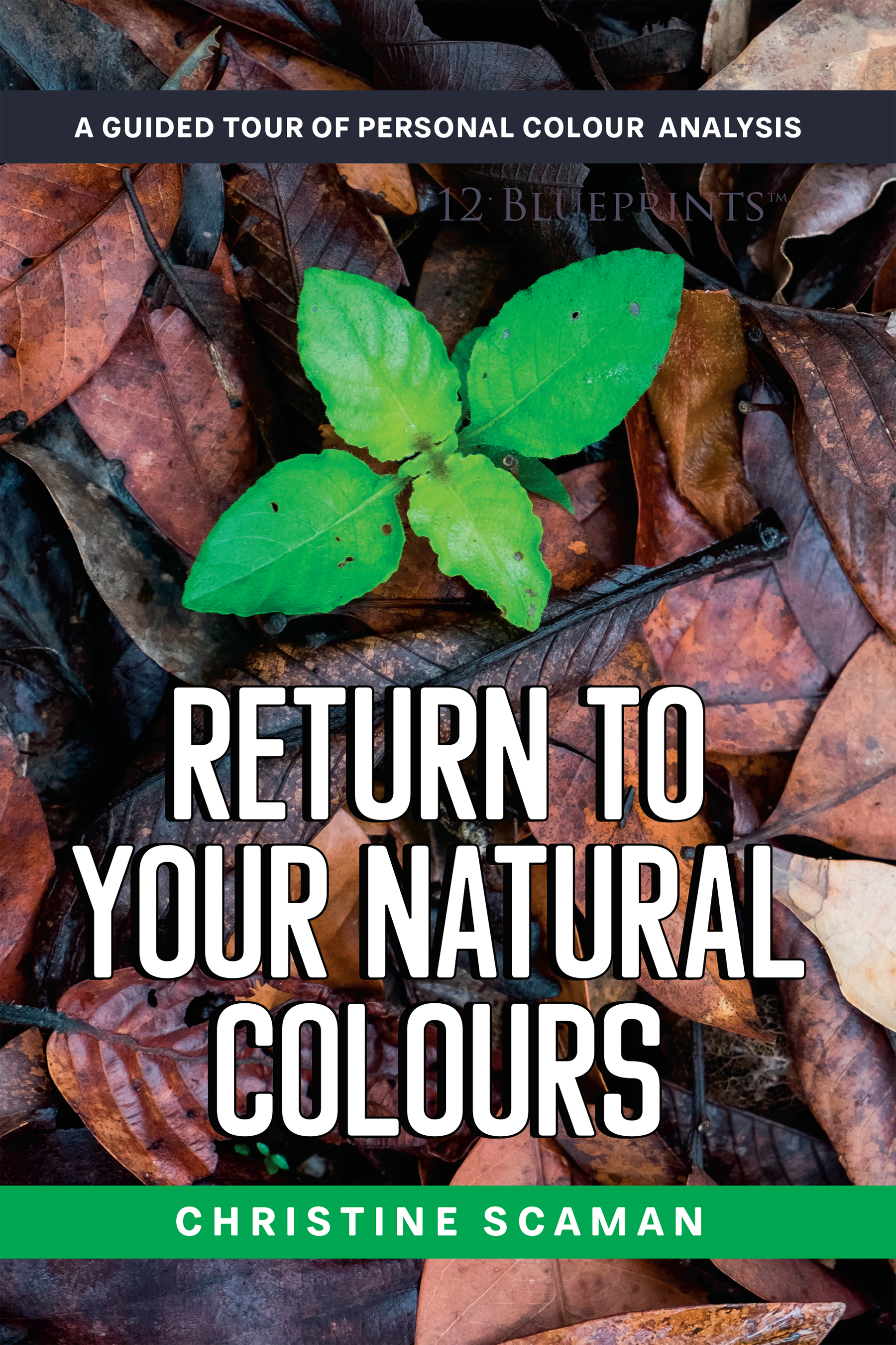 """Return to your Natural Colours"" by Christine Scaman"